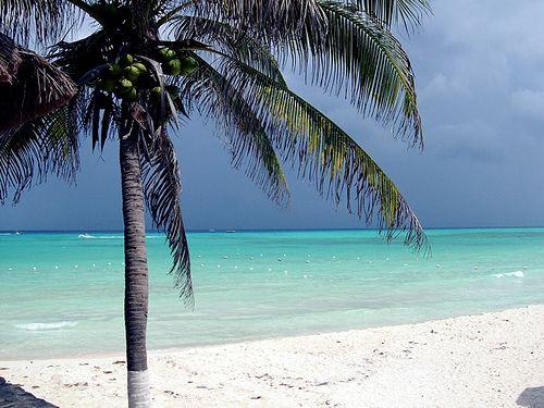 Paseo por playa san juan en cozumel